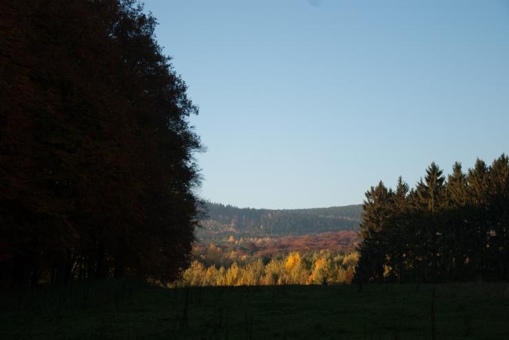 Höstpromenad Königstein